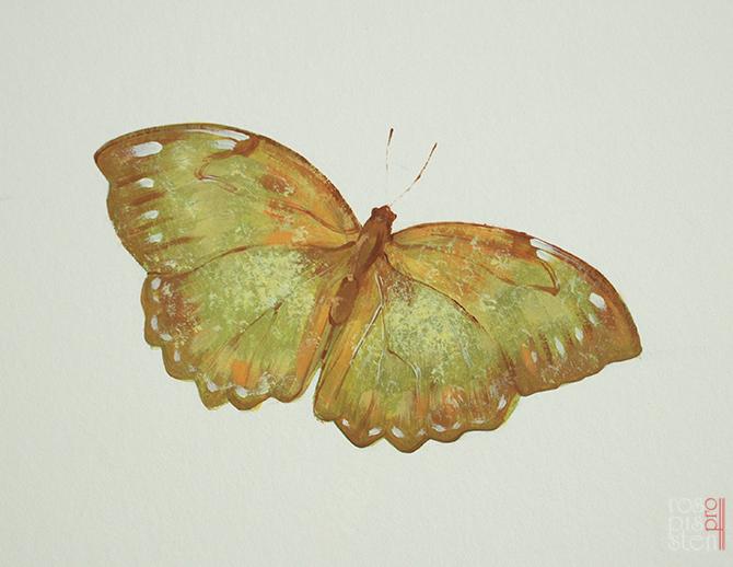 роспись детской комнаты, бабочка